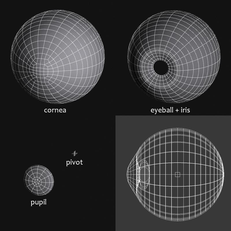 eye wireframe, cornea, eyeball, iris, pupil