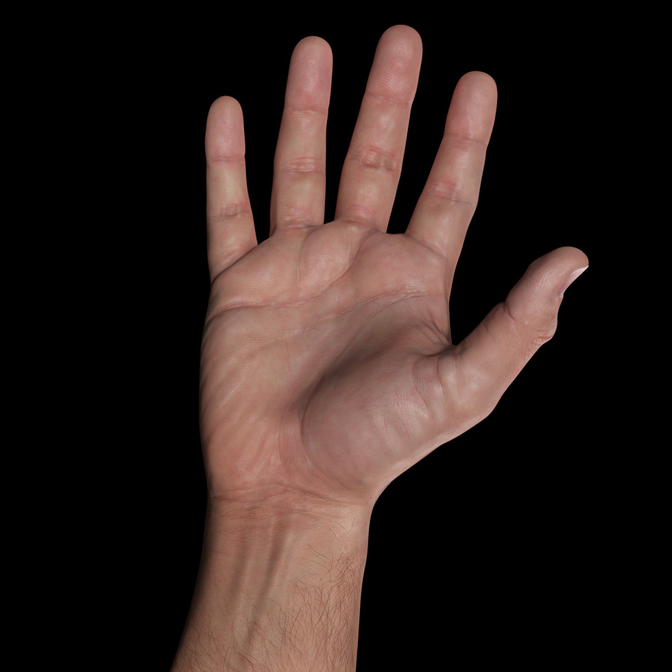 3d male hand palm sss render