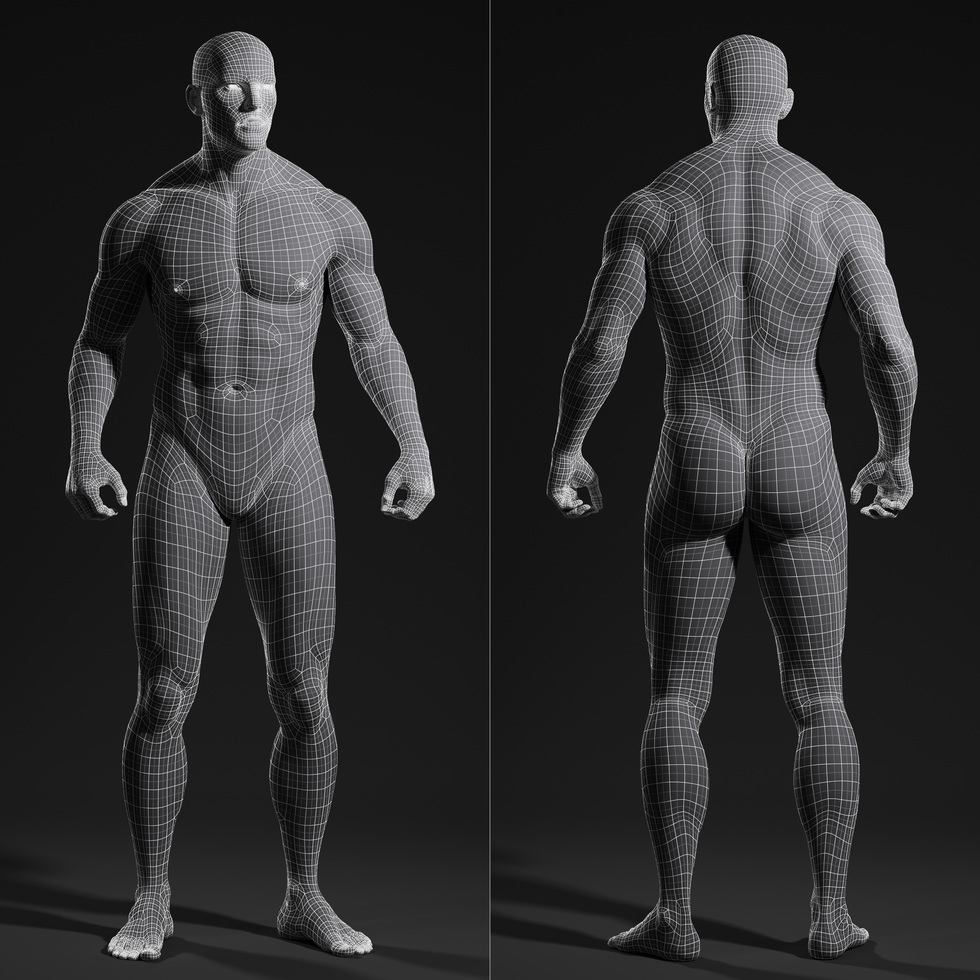 3d male body wireframe