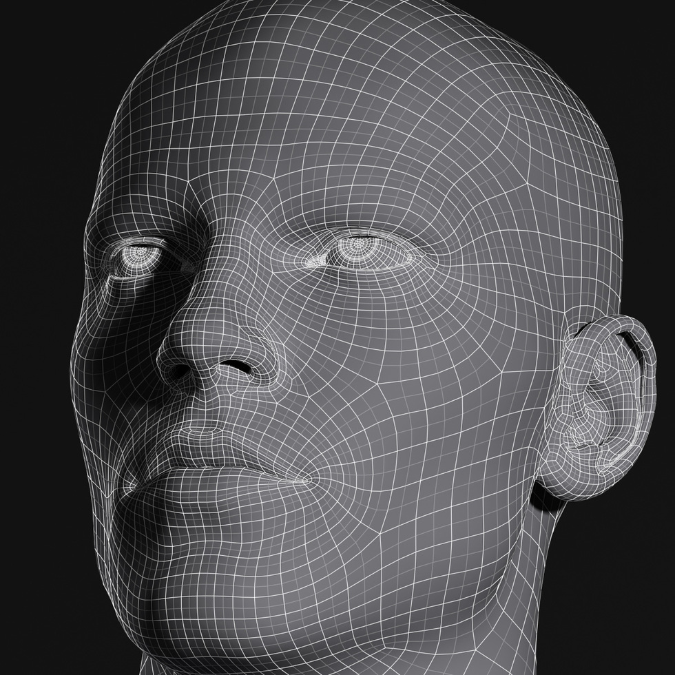 3d head wireframe