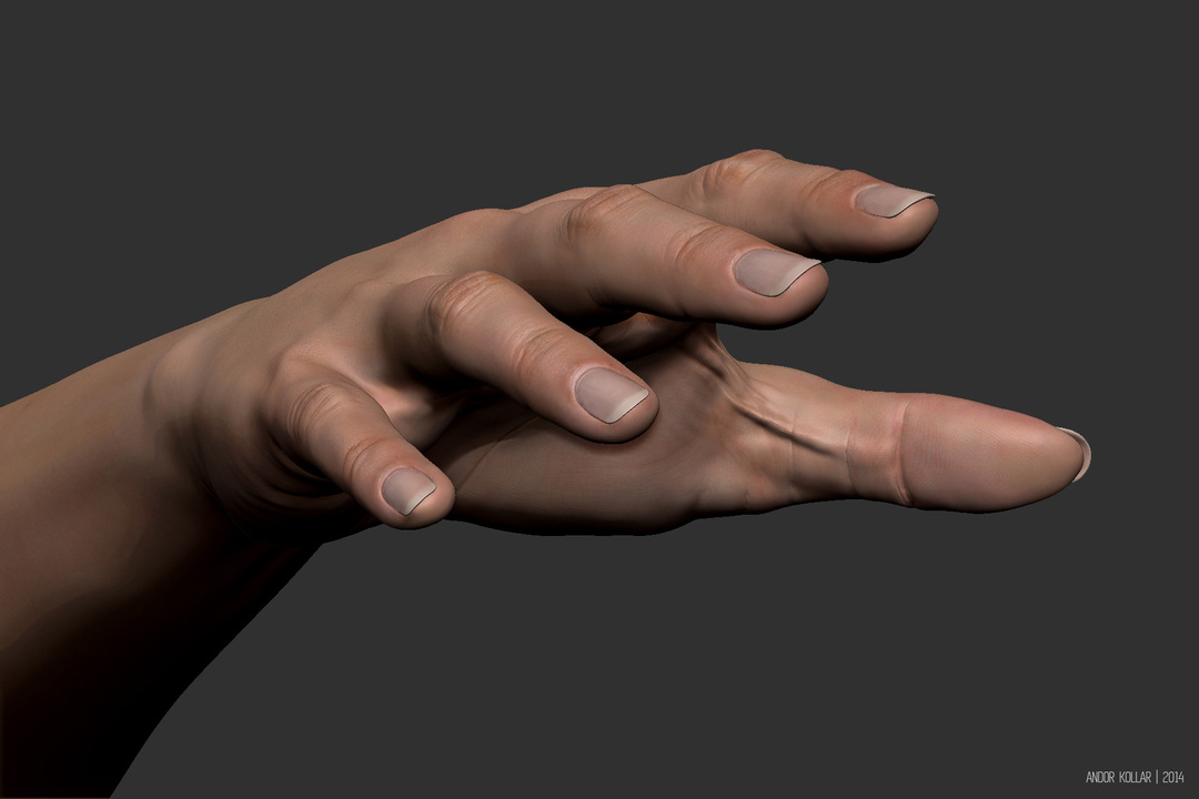 Female hand in ZBrush