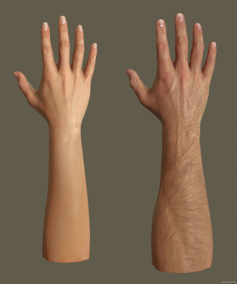 Female and male arms with light skin