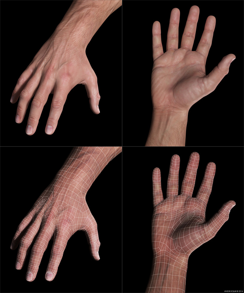3d hand wireframe