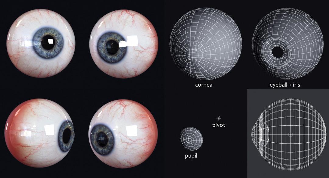 realistic 3d eye wireframe