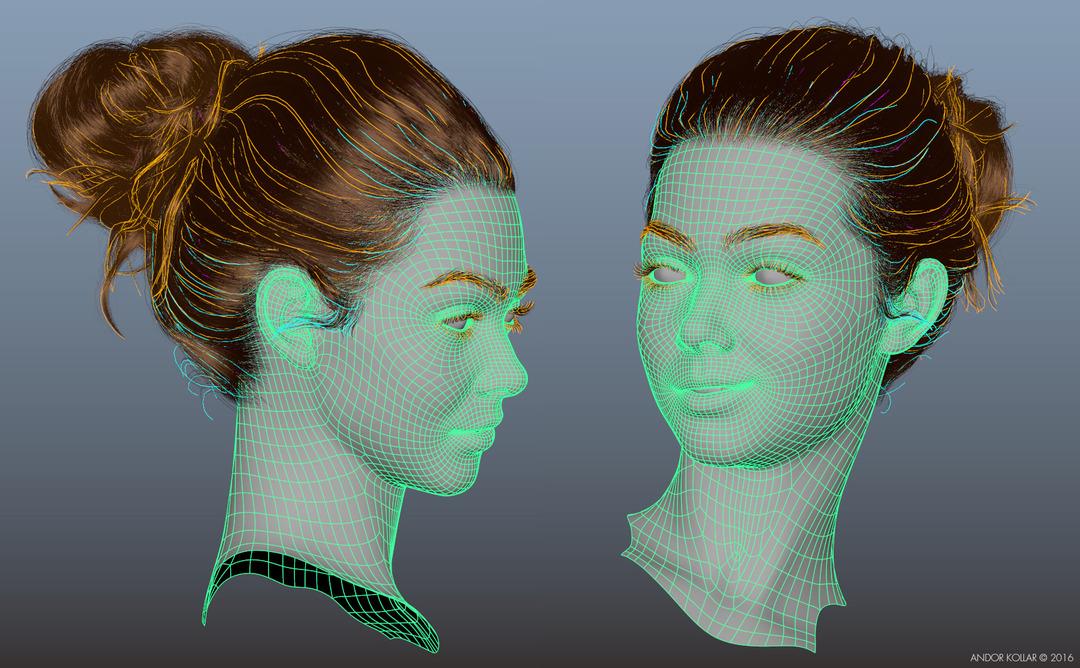 Andor Kollar 3d Female Head with Maya XGen Bun Hair Guides wireframe