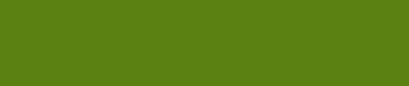 green section closing divider