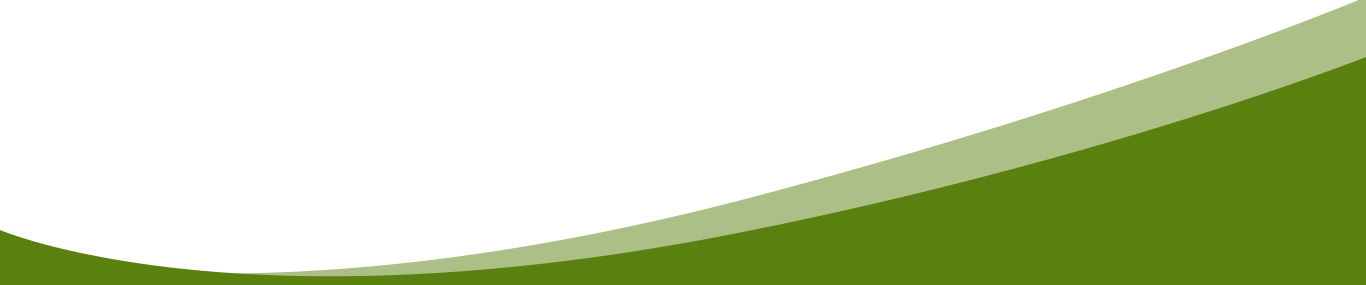 green section opening divider