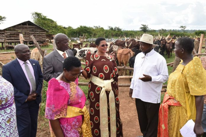 Museveni Tells Opposition Politicians To Refrain From Individual Fights And Focus On Development