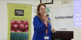 ENZA ZADENS graft tomatoes uganda