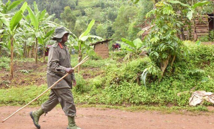 Museveni Bush War trek pan Africanism