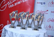 2020 Zzina Awards nomination categories