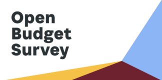 2019 Open Budget Survey results
