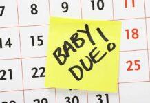 pregnancy calculator week by week