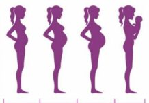 Pregnancy Stages: The 1st Trimester