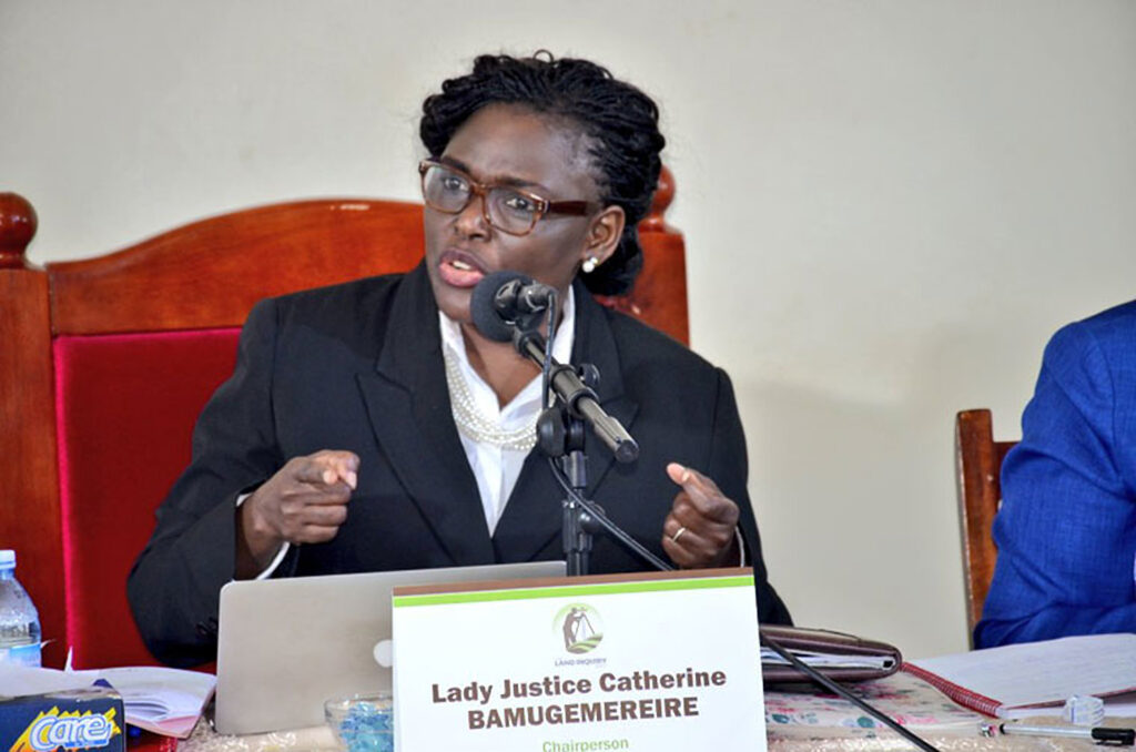 catherine bamugemereire appointed land matters
