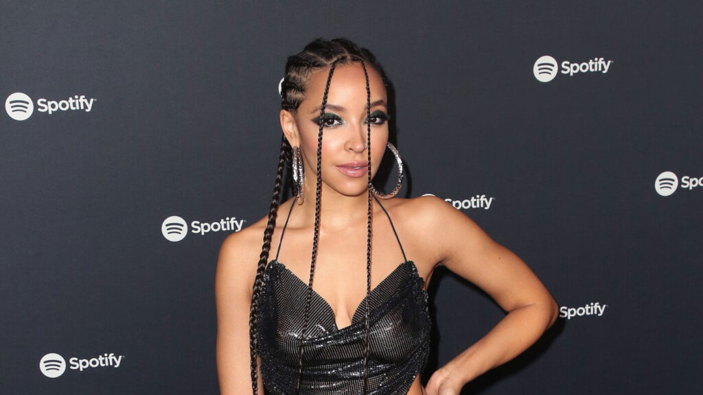 Tinashe musicians in africa