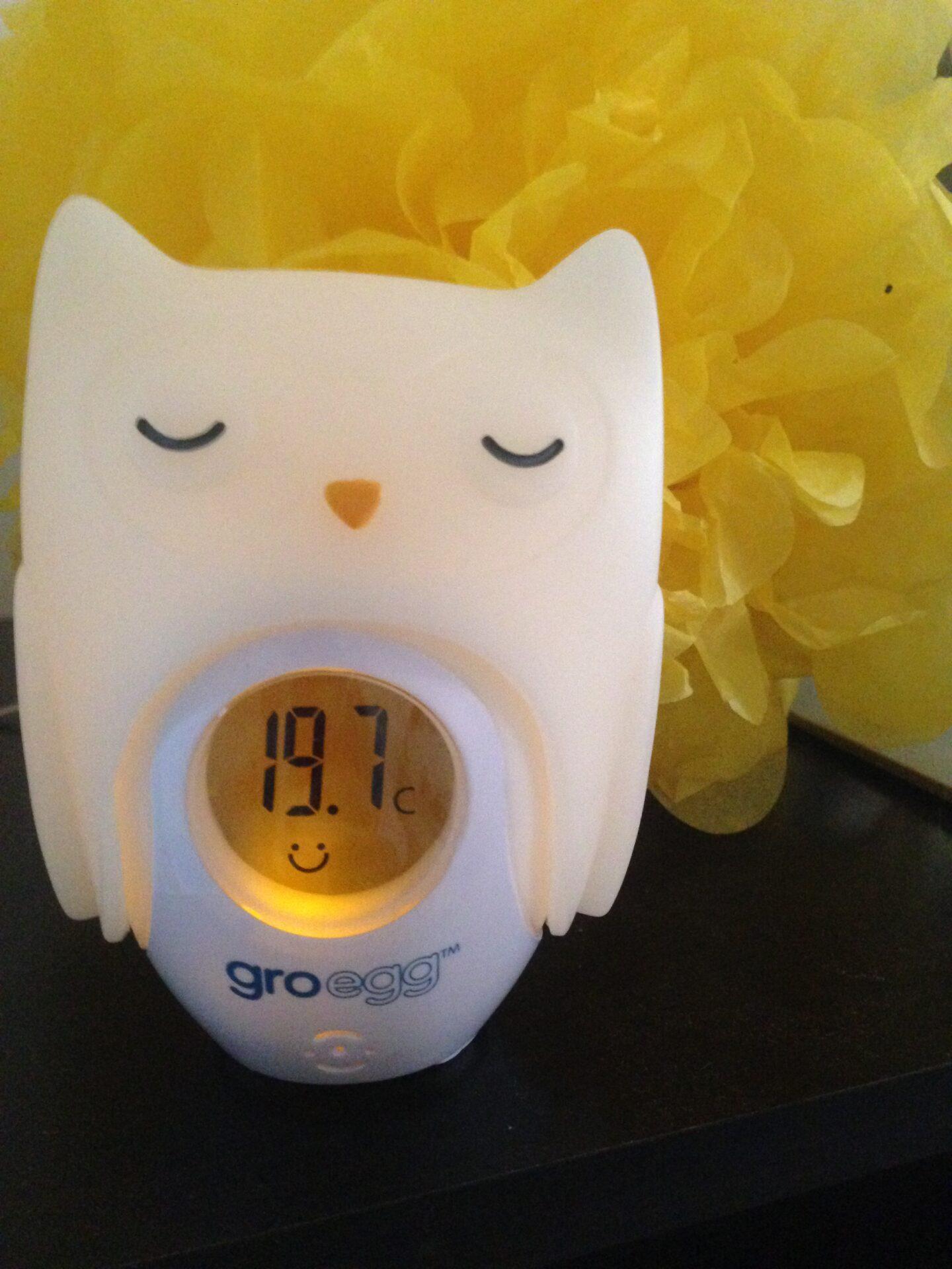 Lottie Loves: Gro-egg Room Thermometer