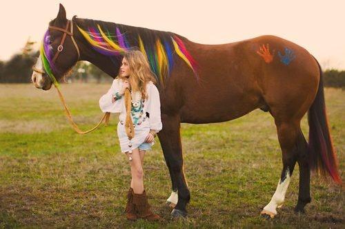Horse with multicoloured mane
