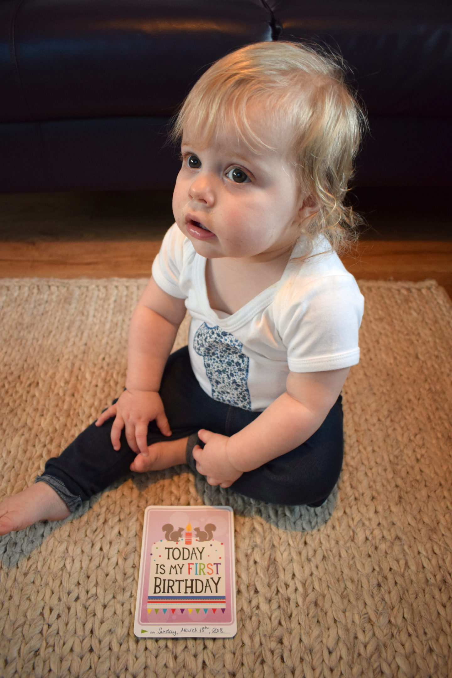 one year old girl, sitting, holding milestone card, reading today is my first birthday