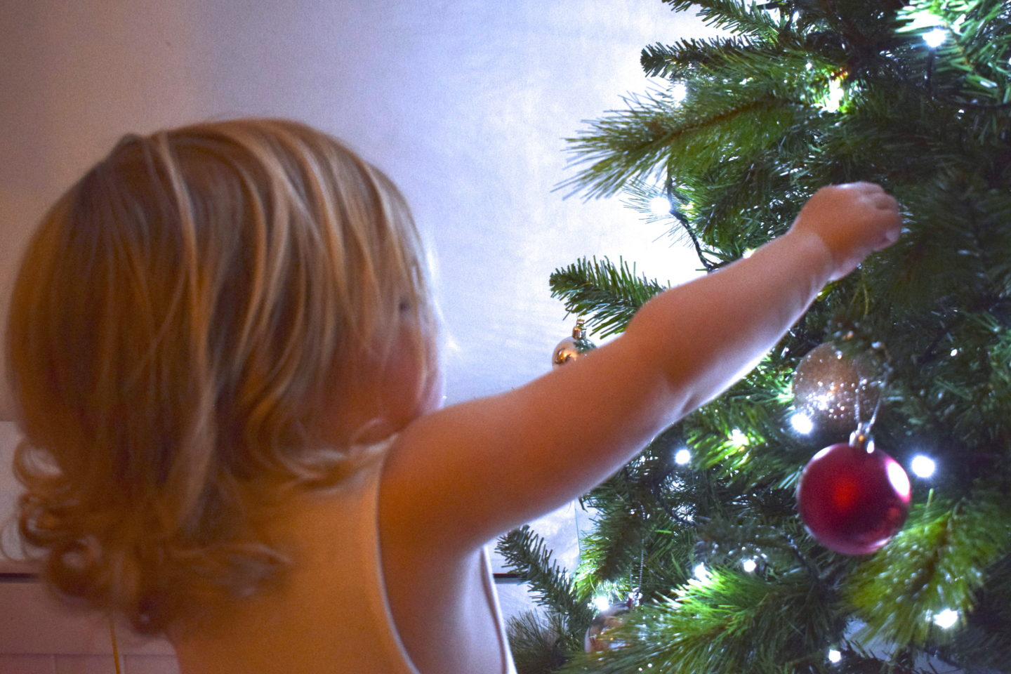 22 months old girl putting bauble on a christmas tree
