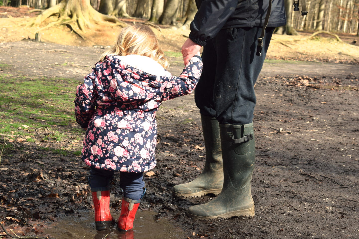 Two year old holding father's hand, splashing in puddle