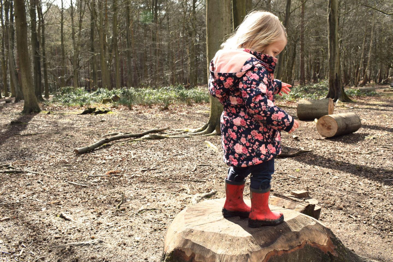 The Gruffalo Trail, Essex, girl standing on tree stump