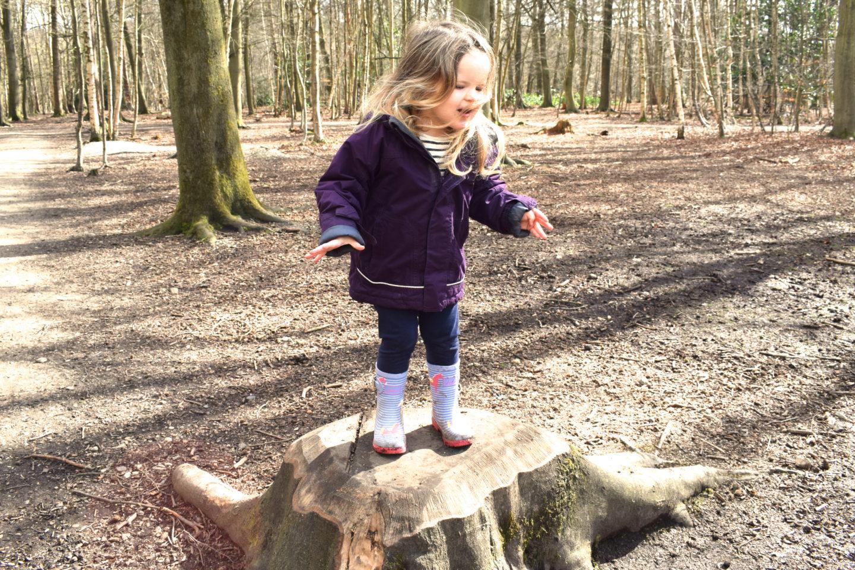 The Gruffalo Trail, Essex, girl playing on tree stump