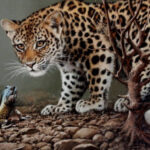 "FC1 ""Encounter"" Leopard cub with Agama lizard Oil on canvas 35cm x 45cm"