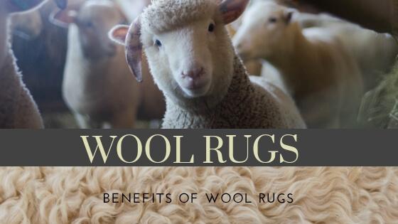 benefits of wool rugs