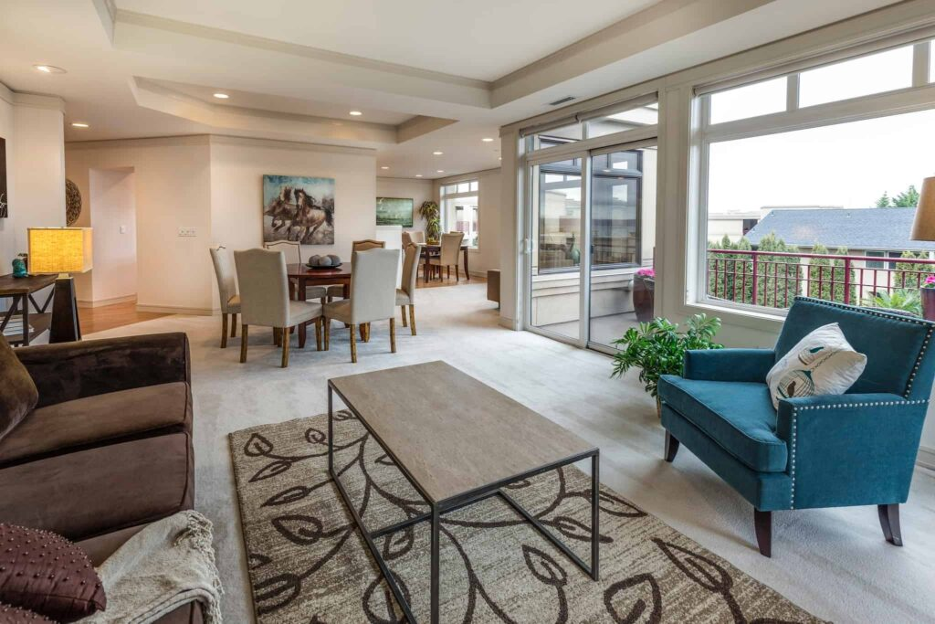transitional area rug in living room