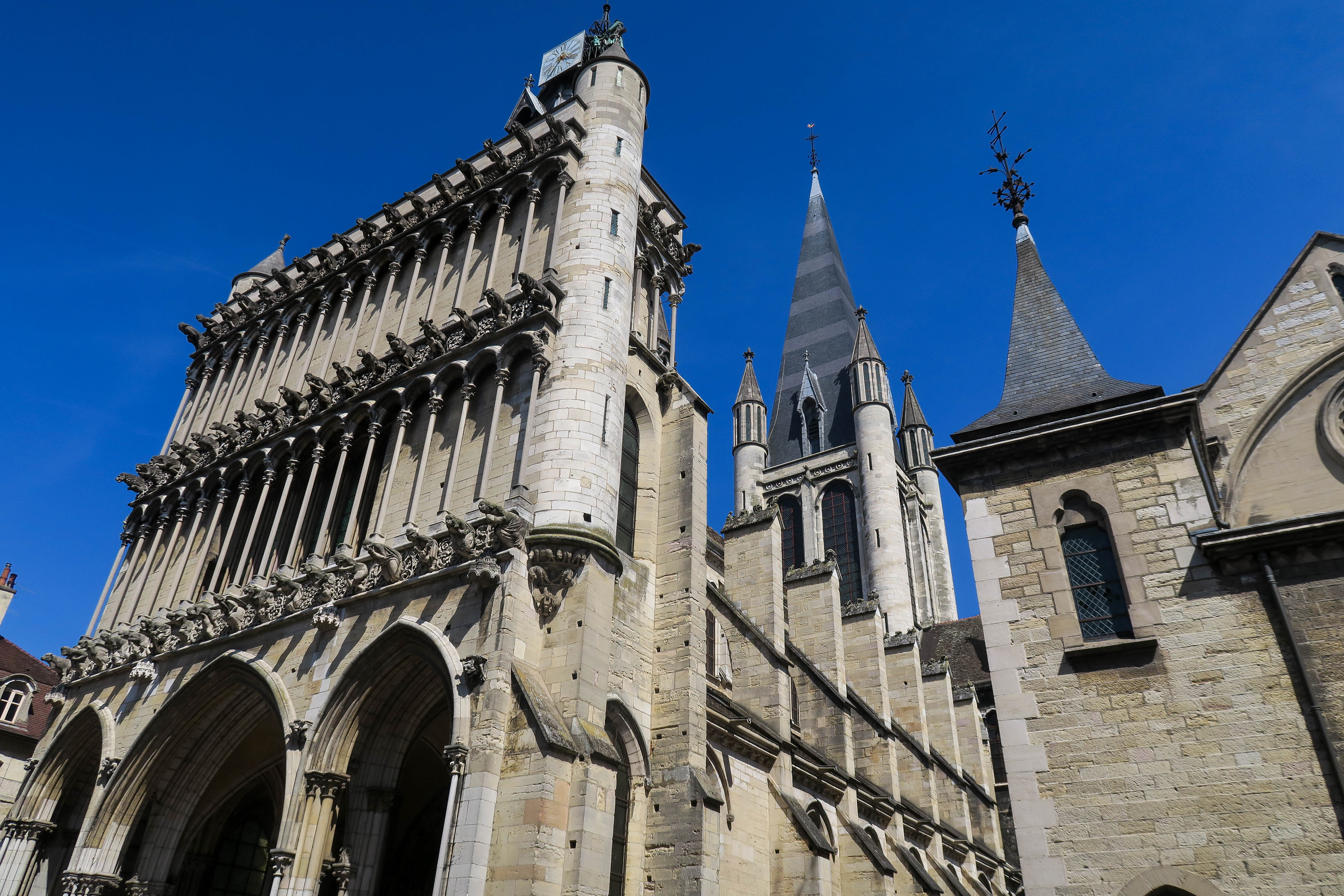 Dijon, France. Travel Blog & Diary by Rosie Andre (wanderlust, traveller, world, france, europe, photos, daytrip, guide, travel tips, photograph, photography, photos, park, architecture, globe trotter, paris, french, city)