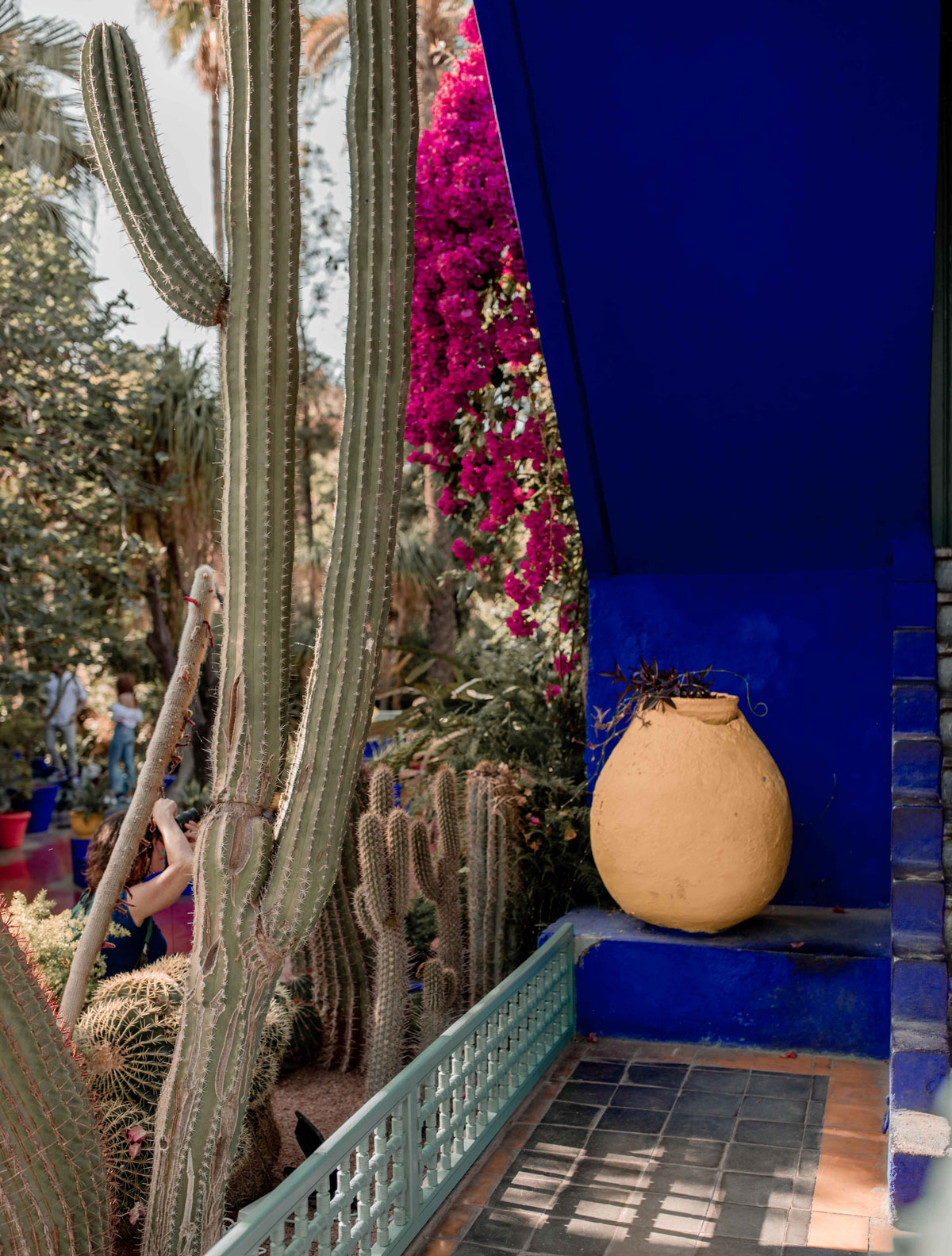 3-Top-things-to-do-in-marrakech-Bucket-list-kelseyinlondon-Kelsey-Heinrichs--What-to-do-in-marrakech--Where-to-go-in-marrakech-top-places-in-marrakech-le-jardin-majorelle