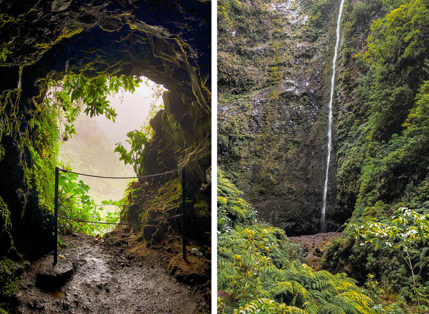 levada walk-Top-things-to-do-in-madeira-Bucket-list--Instagram-Story-Template--kelseyinlondon-Kelsey-Heinrichs--What-to-do-in-madeira--Where-to-go-in-madeira-top-places-in-madeira-