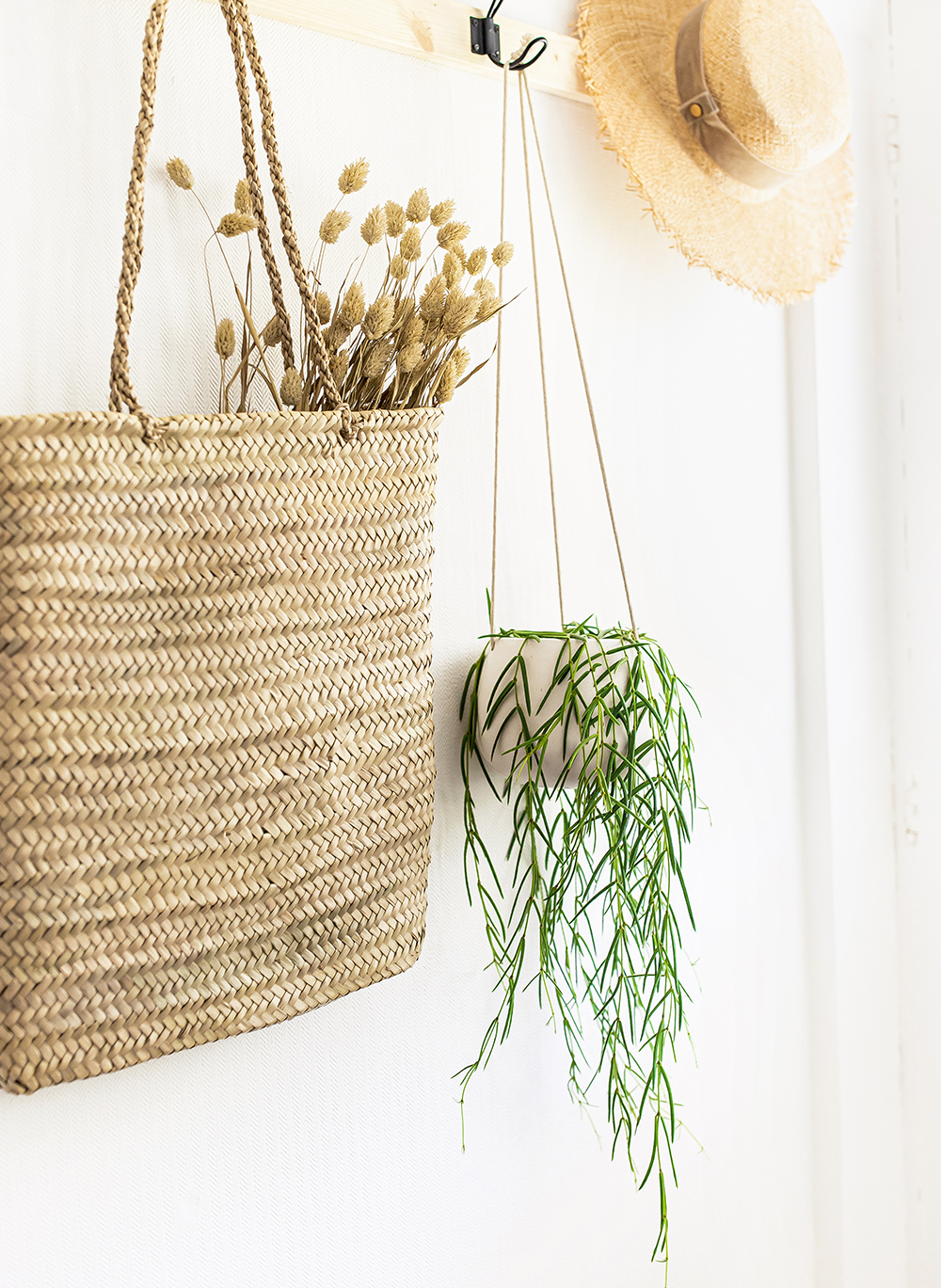 Hanging-Wax-Plant-Linear-Hoya--kelseyinlondon-homewithkelsey-plant-guide-best-indoor-plants