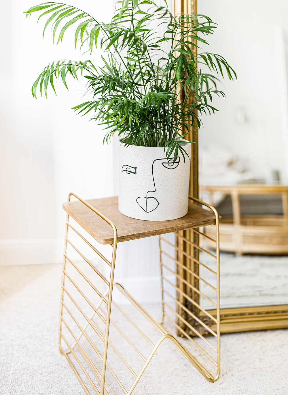 Parlour-Palm-Chamaedorea-elegans-scandens-kelseyinlondon-homewithkelsey-plant-guide-best-indoor-plants