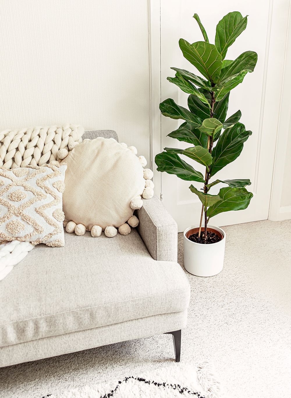 fiddle-leaf-fig-Ficus-lyrata-kelseyinlondon-homewithkelsey-plant-guide-best-indoor-plants