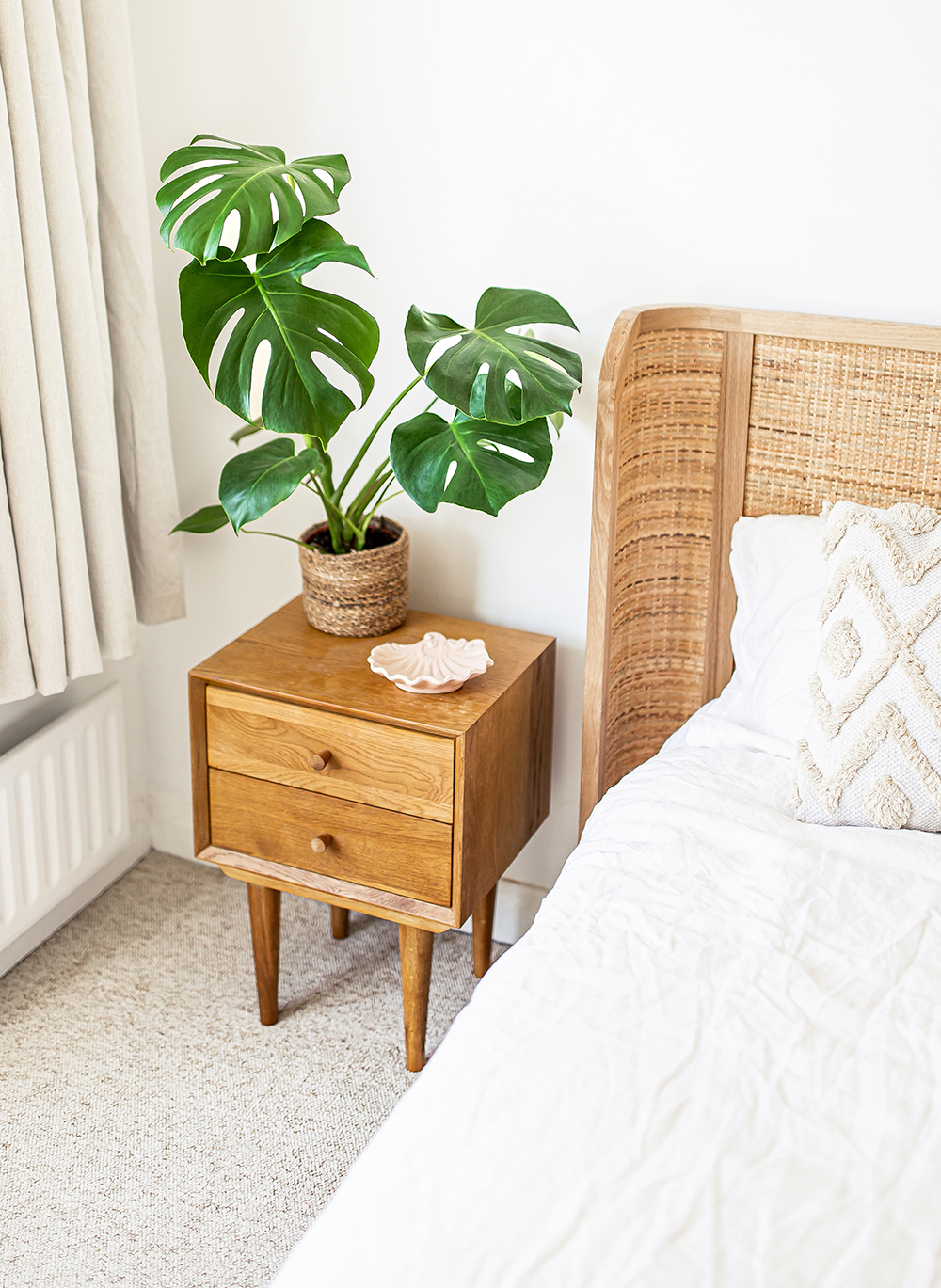 swiss-cheese-plant-Monstera-deliciosa--kelseyinlondon-homewithkelsey-plant-guide-best-indoor-plants