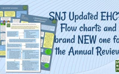 SNJ: Updated EHCP Flow charts and a brand new one for the Annual Review!