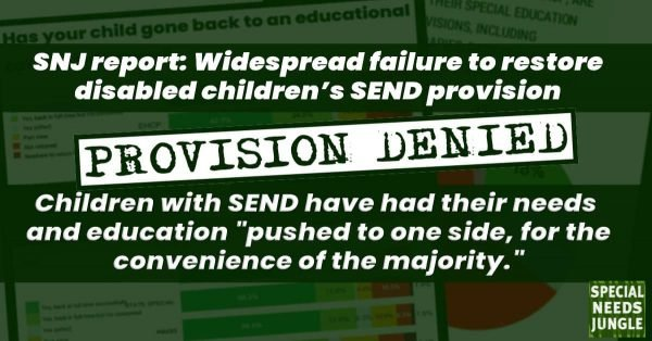 """Provision denied: Children with SEND have had their needs and education """"pushed to one side, for the convenience of the majority."""""""