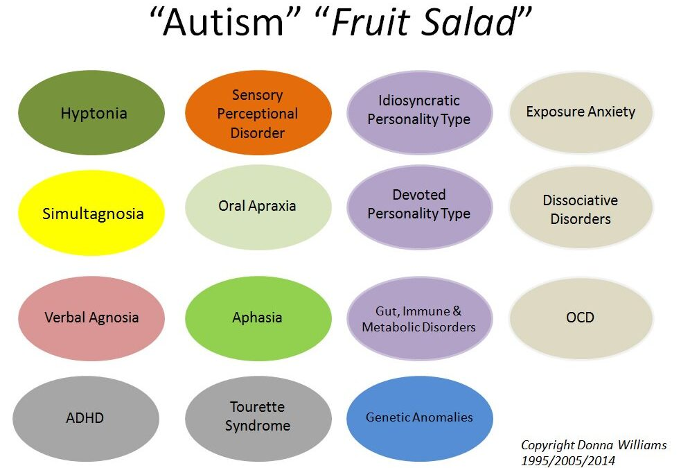 Why We Need to Start Looking at Autism as a Fruit Salad – an article by our Ambassador Paul Isaacs