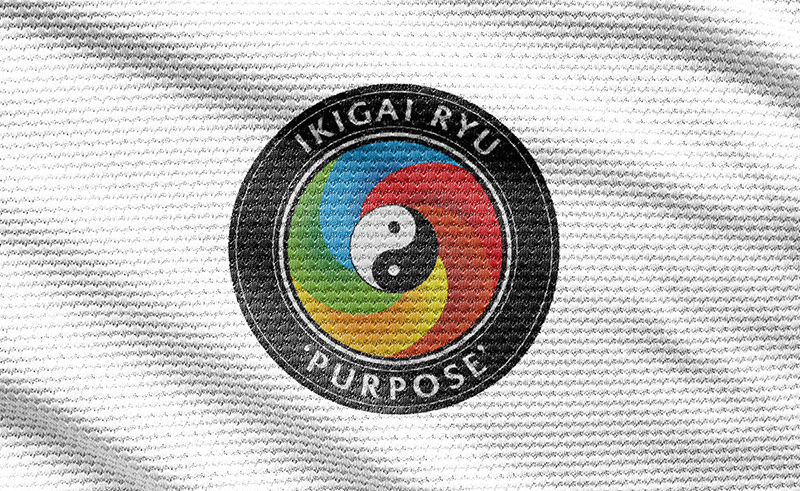 Ikigai Ryu Martial Arts Kenilworth Warwickshire as designed by Emma Scott Web Design