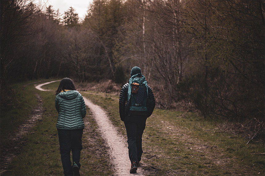 Max and Tom walk in the local woods, Alton, Hampshire
