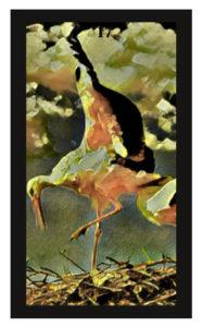 Lenormand Storks Card