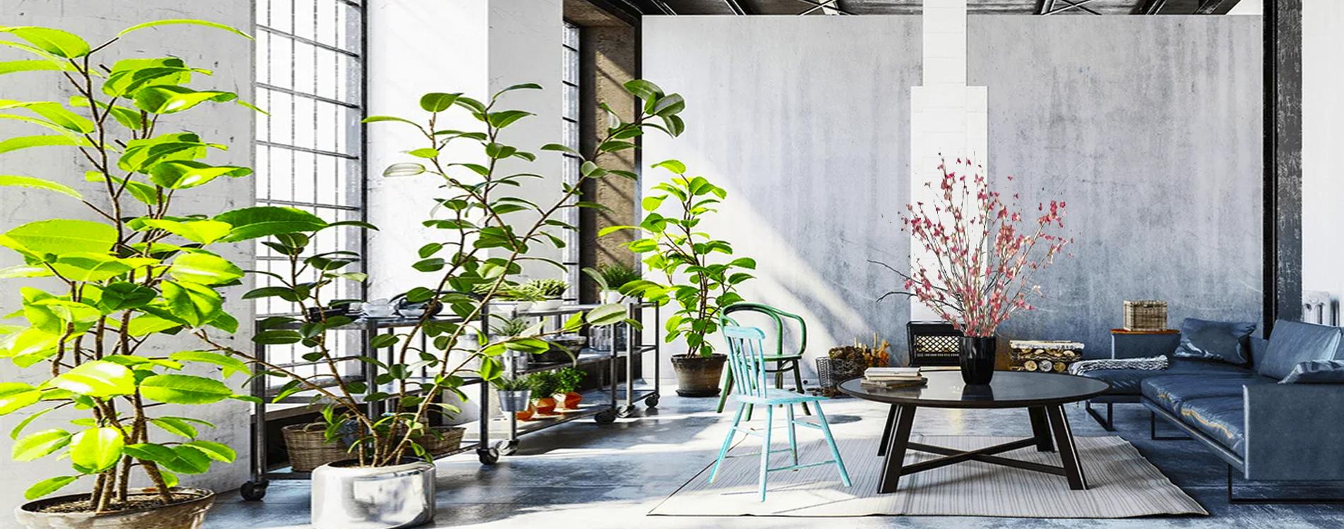 Zohrab Bauer Architects Green 79psd