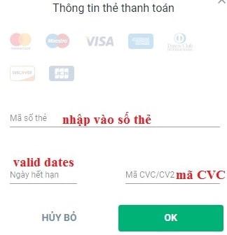 Dien-thong-tin-the-visa