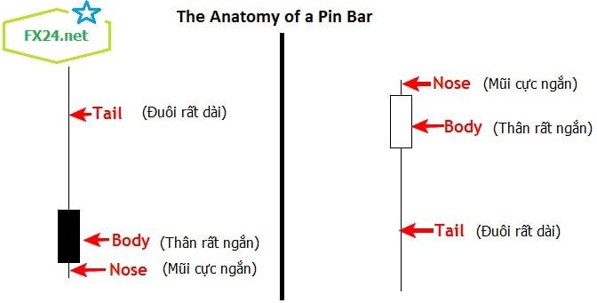 Pin-bar-price-action-toan-tap