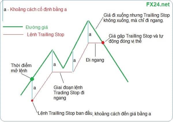 Mo-phong-lenh-trailling-stop-la-gi-fx24