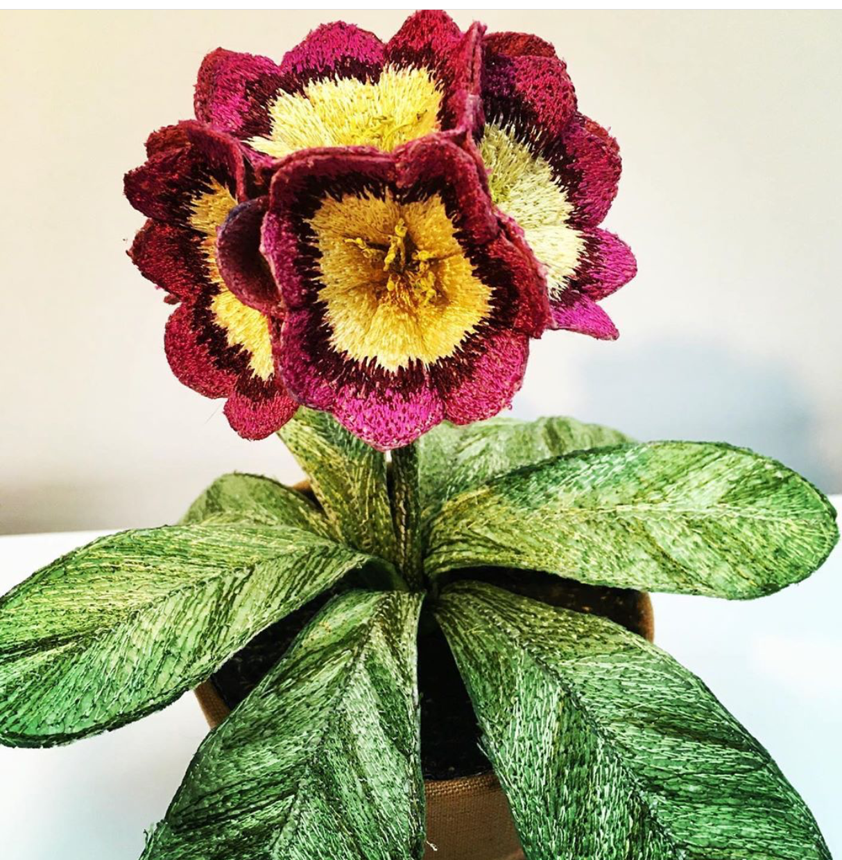 corinne-young embroidered auricula