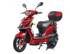 AVAN MOTORS XERO plus price in india