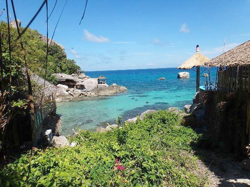 backpacking asia stop five koh tao